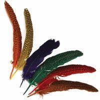 decoratie veren