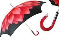 paraplu's dames