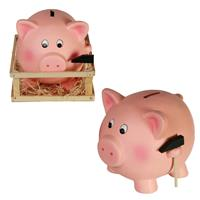spaarpotten, geld