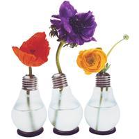 bloempotten en vazen