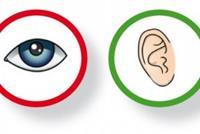 oog en oor