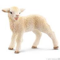 schapenbenodigdheden