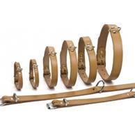 Halsbanden en lijnen