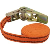 Spanband (eendelig) Trekkracht (lc) vastbinden (enkel/direct)=125 daN (l x b) 5 m x 25 mm Petex 43192635