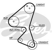 Zahnriemen 'PowerGrip' | GATES (5598XS)