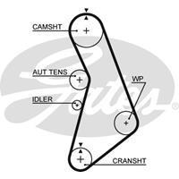 Zahnriemen 'PowerGrip' | GATES (5491XS)
