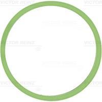 REINZ Ansaugkrümmerdichtung 71-40531-00 Ansaugdichtung,Dichtung, Ansaugkrümmer VW,AUDI,SKODA,GOLF VI 5K1,GOLF PLUS 5M1, 521,POLO 6R, 6C