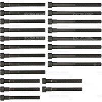 REINZ Zylinderkopfschraubensatz 14-32032-02  MERCEDES-BENZ,PUCH,Stufenheck W123,G-CLASS W460,COUPE C123,KOMBI Kombi S123,T1 Bus 601