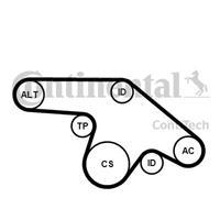 continentalctam Keilrippenriemensatz | CONTINENTAL CTAM (6PK1370K1)