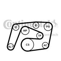 continentalctam Keilrippenriemensatz | CONTINENTAL CTAM (6PK2260K1)