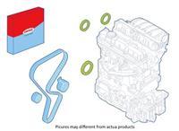 CORTECO Radialdichtringenset, motor , Riemschijfzijde