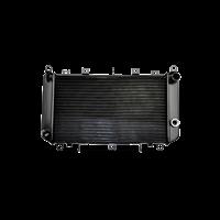 maxgear Radiator FIAT AC252165 46558704