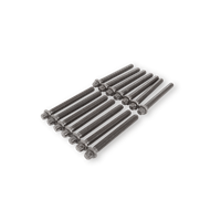 corteco Cilinderkopbouten VW,AUDI 016819B 068103384A,1328871,068103384A Cilinderkopbout