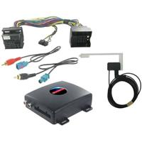 TCP DAB interface Volkswagen 29132050