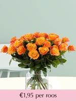 Surprose Oranje rozen - Kies je aantal | Rozen online bestellen & versturen | .nl