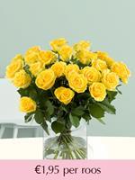 Surprose Gele rozen - Kies je aantal | Rozen online bestellen & versturen | .nl