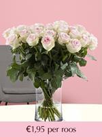 Surprose Zachtroze rozen - Kies je aantal (Sweet Revival) | Rozen online bestellen & versturen | .nl