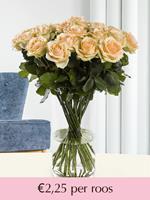 Surprose Zalmkleurige rozen - Kies je aantal | Rozen online bestellen & versturen | .nl