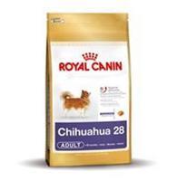 Chihuahua 3Kg