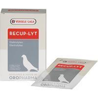 Recup-Lyte - 12 x 20 g