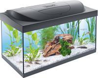 Aquarium - 54L