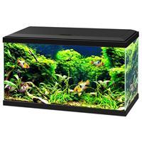 ciano Aquarium 60 Led Cf80 60x30x41 cm - Aquaria - Zwart