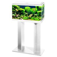 ciano Aquarium 60 Led Cf80 60x30x41 cm - Aquaria - Wit