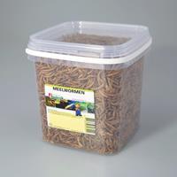 nerus Meelwormen 2.5 liter