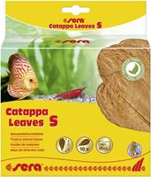 Sera Catappa Leaves S 10 - 15 cm