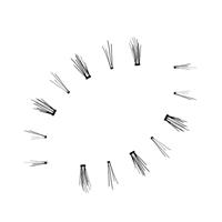 SocialEyes Lashes SocialEyes False Lashes Dolly