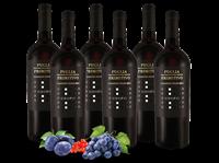 Farnese Vini Vorteilspaket 6 Flaschen Primitivo ESEMPIO