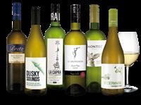Verschiedene Sauvignon-Blanc-Weltreise-Weinpaket
