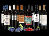 Verschiedene Spanisches Rotwein-Topseller-Probierpaket