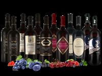Torrevento Probierpaket XL Die besten Rotweine von