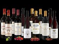 Verschiedene Französisches Rotwein-Topseller-Probierpaket