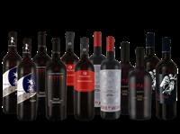 Verschiedene Italienisches Rotwein-Topseller-Probierpaket