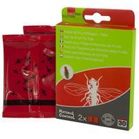 Navulling Fruitvliegjesval - Insecten - Natural Control