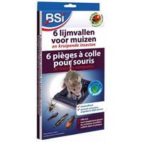 6 Lijmvallen Voor Muizen En Kruipende Insecten - Insecten - BSI