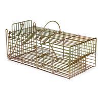 Ratten Inloopval - Ratten vangkooien - Ronada