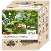 Eikenprocessiemotval - Eikenprocessierups - Pokon