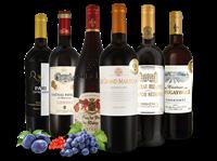 Joseph Castan Kennenlernpaket Rotweine  aus Südfrankreich