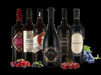 Torrevento Probierpaket Die besten Rotweine von