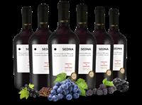 Farnese Vini Vorteilspaket 6 Flaschen Primitivo di Manduria SEDNA