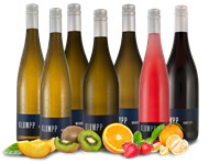 Klumpp Kennenlernpaket 7 Fl. Gutsweine vom Weingut  aus Baden
