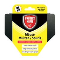 Protect Home Mice Feeder Plastic
