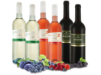 Vinhos Messias Probierpaket 6 Flaschen Messias Surpresa mit je 2 Flaschen