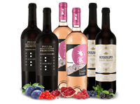 Verschiedene Probierpaket Primitivo aus Apulien mit 6 Flaschen