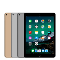 Apple iPad Air 2 (Oog)