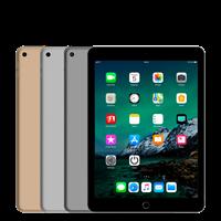 Apple iPad Air 2 (Oog)