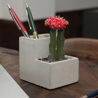 Kikkerland Concrete Desktop Planter Small